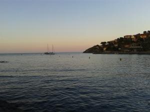 Collioure 2015